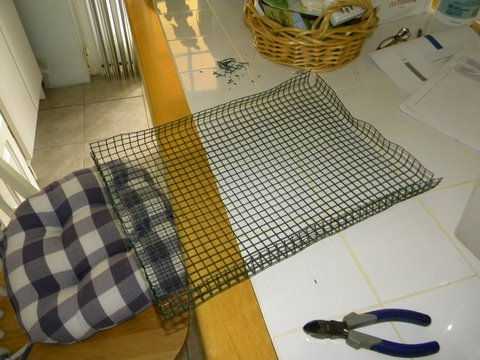 making a wire bottem for baby birds in totes or other to get off the mess Bird_p11