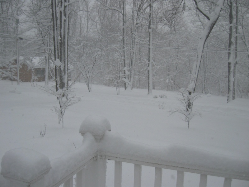 20 to 30 inches of snow ack Img_0220