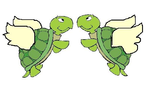 just something cute Turtle11