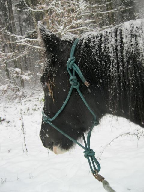 première neige 13210