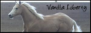 •• box #o5 ▬ Vanilla Liberty.  Vanill10