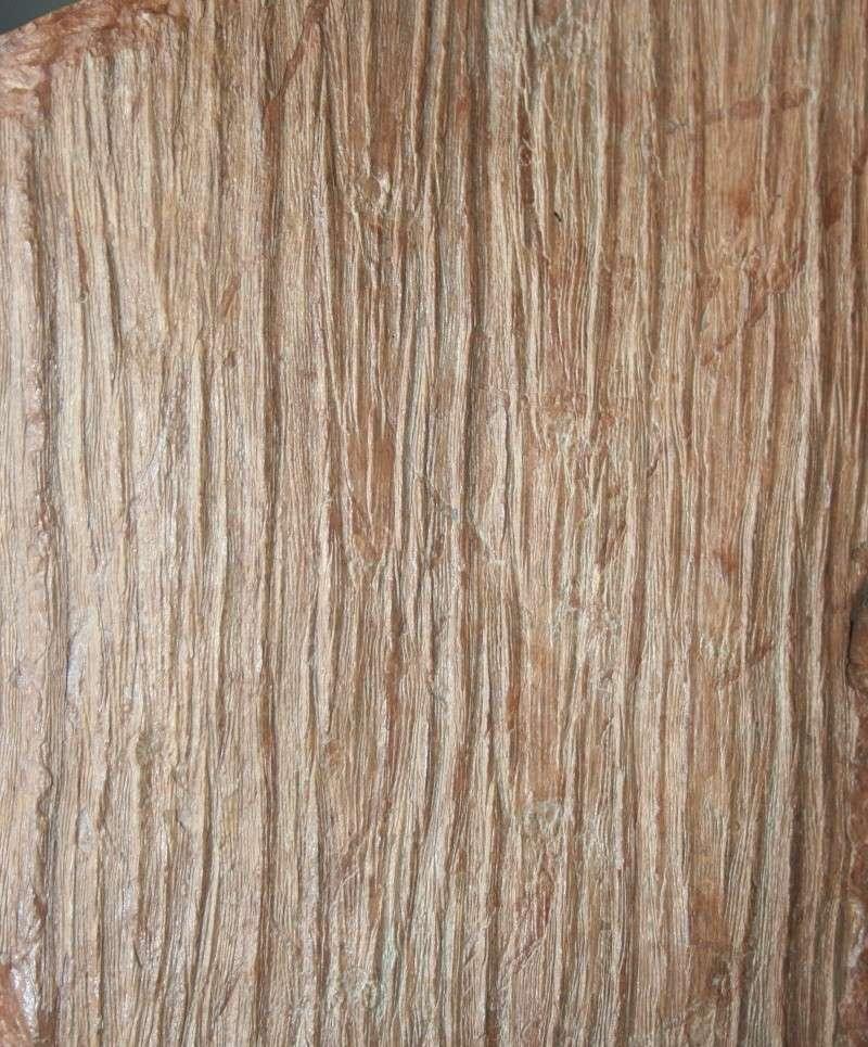 Grès (Sandstone) Schistes( Shale) types de conservation Img_4311