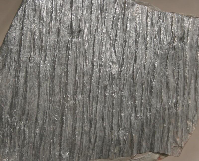 Grès (Sandstone) Schistes( Shale) types de conservation Img_4312