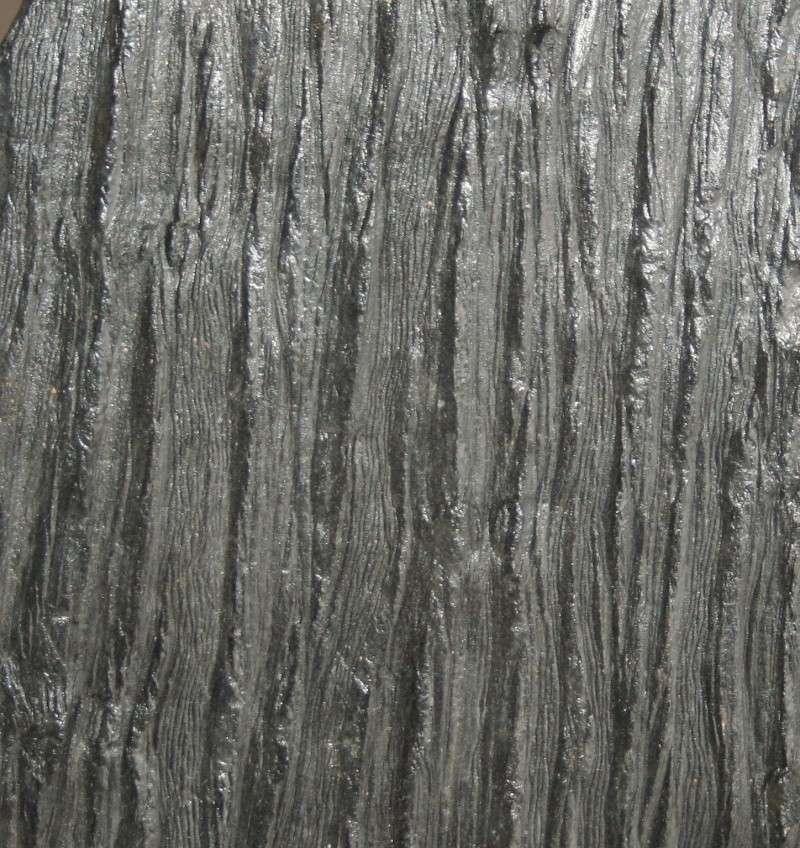 Grès (Sandstone) Schistes( Shale) types de conservation Img_4313
