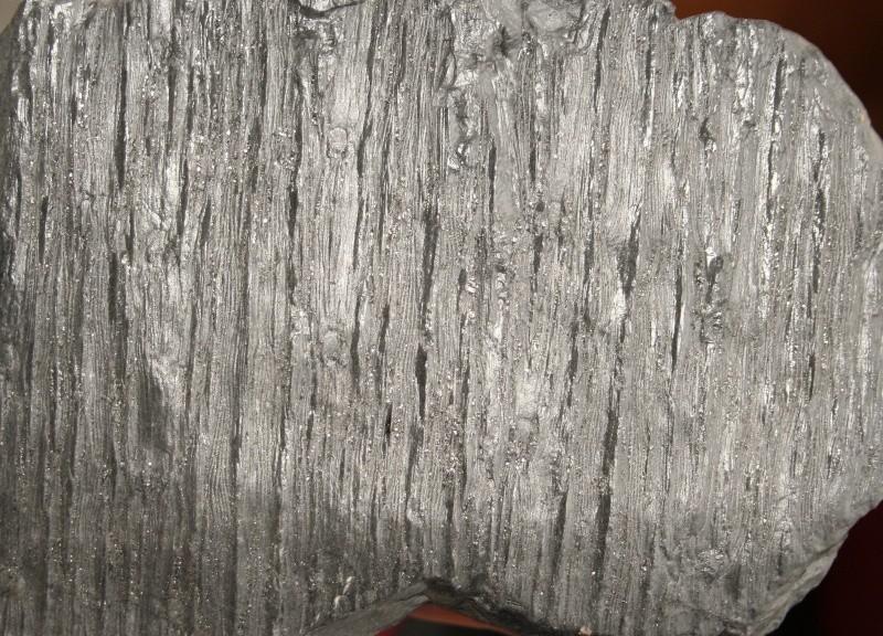 Grès (Sandstone) Schistes( Shale) types de conservation Img_4314