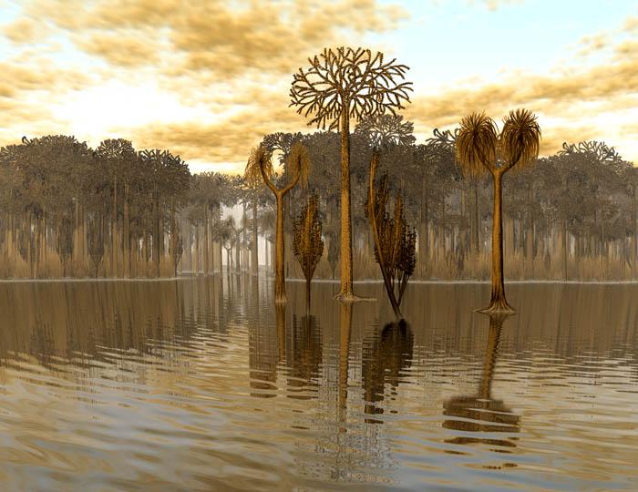 Représentation bidimensionnelle de la forêt houillère Karbon10