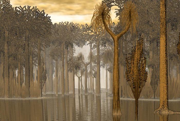 Représentation bidimensionnelle de la forêt houillère Karbon11