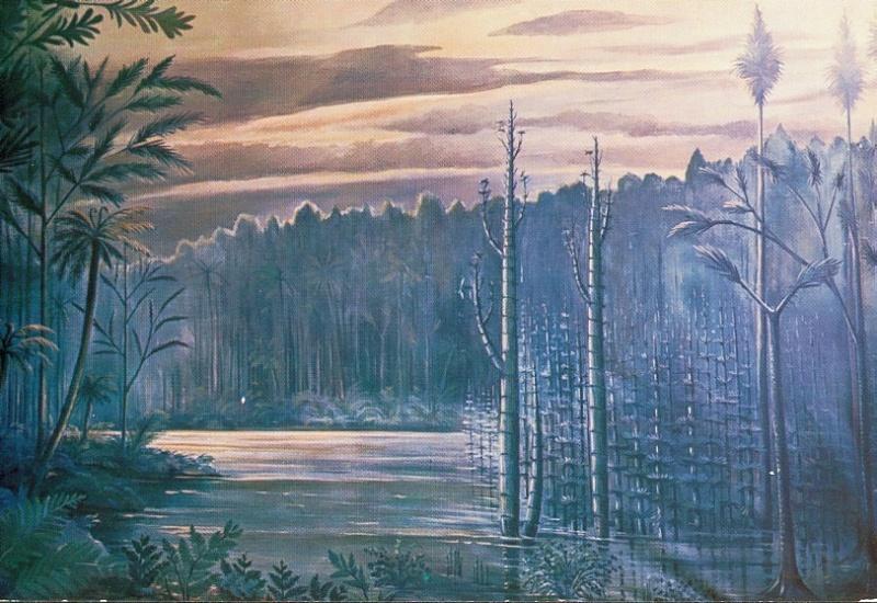 Représentation bidimensionnelle de la forêt houillère Recons16