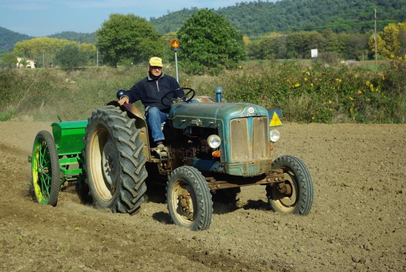 Mi Ebro 48 y sembradora de lineas ex tracción animal. Imgp0130