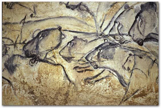 La préhistoire à la télé - Page 4 Chauve10