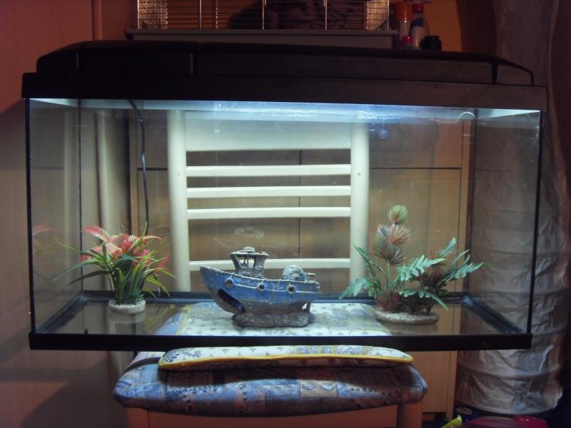 Vend aquarium 100 L Sdc11710