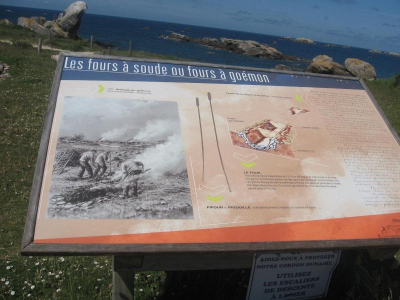 Bretagne 22 29 35 56 - Page 2 Neneha45
