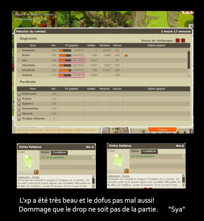 screen d'un skeunk Skeunk10