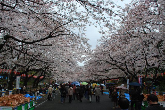 my japan trip pictures ^^ Dsc_3510