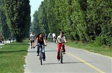 Tutti in sella con gli eco-incentivi e gli italiani riscoprono la bicicletta Stor_110
