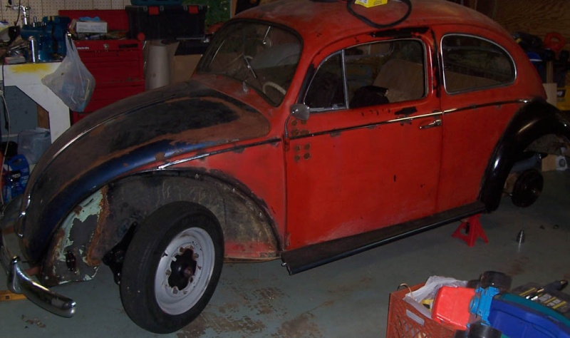 My 1959 Euro Bug 102_5322