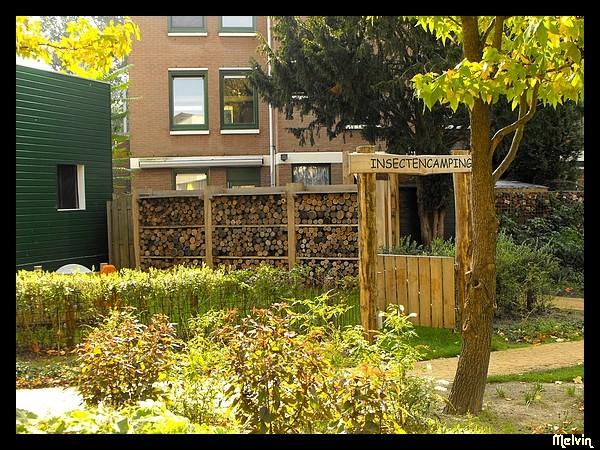 architecture aux Pays-Bas Dscf7411