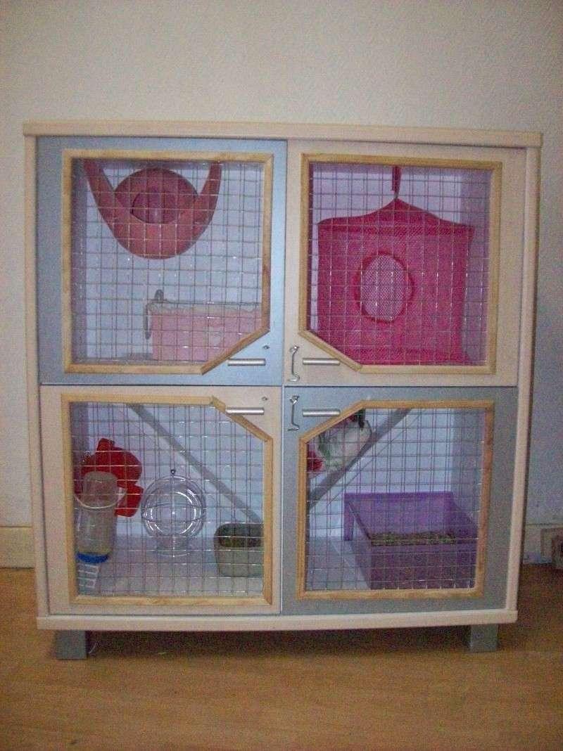 Grande cage artisanale pour tous Rongeurs Nord (59) + covoit 101_0717