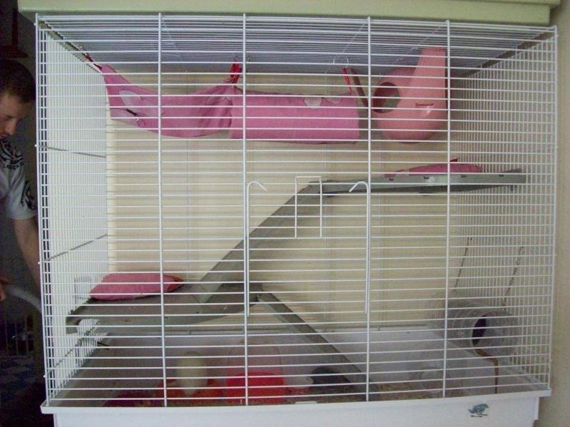 Vends 2 cages neuves pour tous rongeurs 59 NORD 101_2644