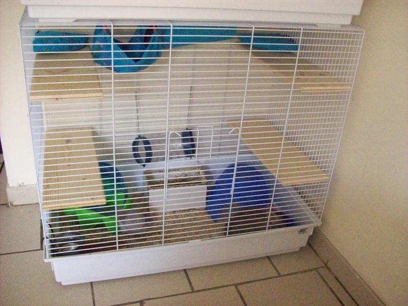 Vends 2 cages neuves pour tous rongeurs 59 NORD 101_2645