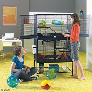 Cage Royale suite comme Neuve (separable) !!!  NORD 59 12518110