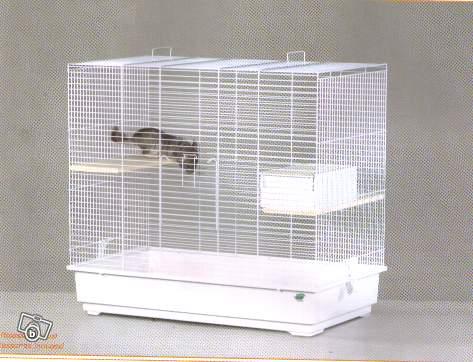 Vends 2 cages neuves pour tous rongeurs 59 NORD 19379812