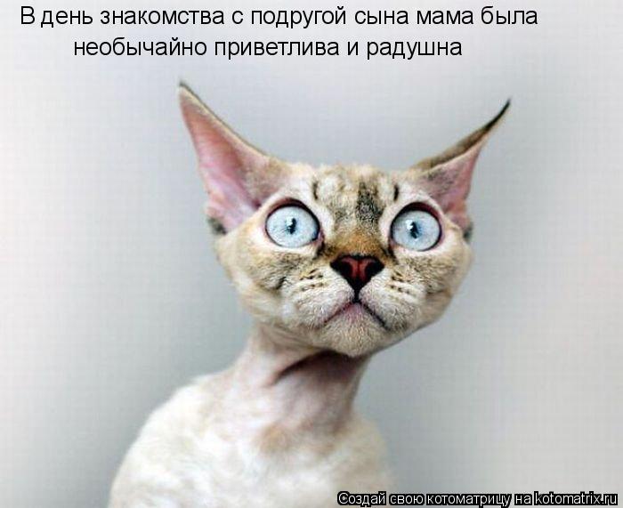 Смешные фотографии животных 64548410