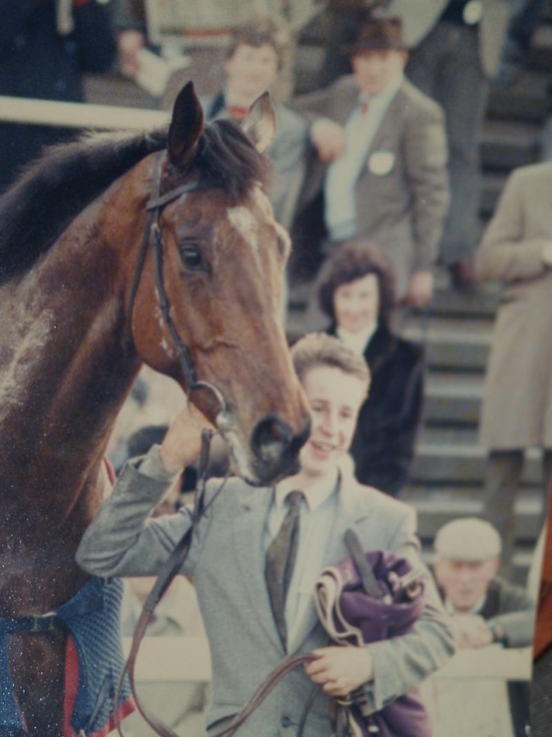 horsey Pictur10