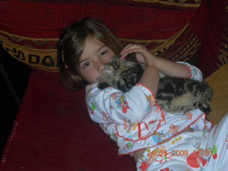 Eliott, un de mes chatons en FA, positif à la leucose... Dscn2714