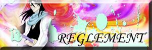 Bleach Regeneration Raglem10