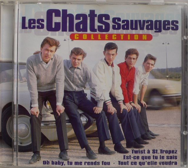 chats sauvages Cd_cha10