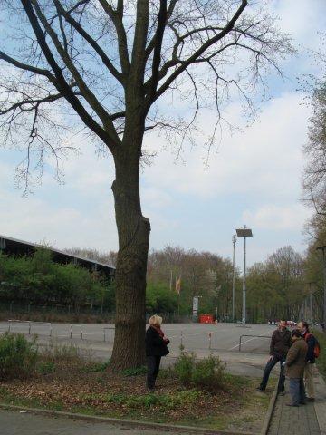 Foire aux Collectionneurs Olympiques - Cologne 2010 Dsc01911
