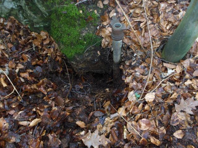 Llanfwrog Woods Mine Hpim3022