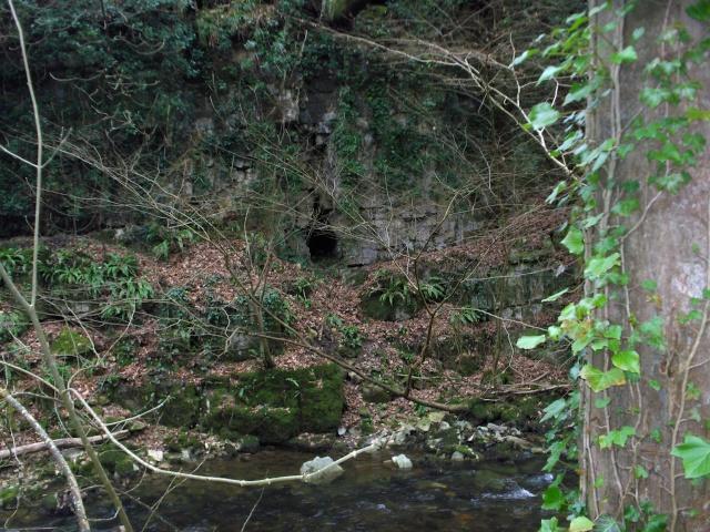 Lady Bagot's Cave (Rhewl) Hpim3214