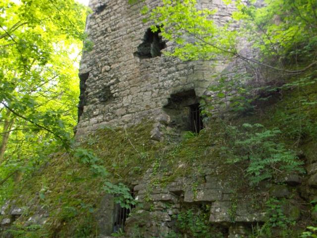 Denbigh Castle Cave Hpim4218