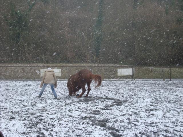 Shan, neige, ballon et ballade. Dsc00510