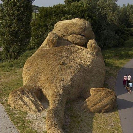 Sculptures d'herbes Marmot11