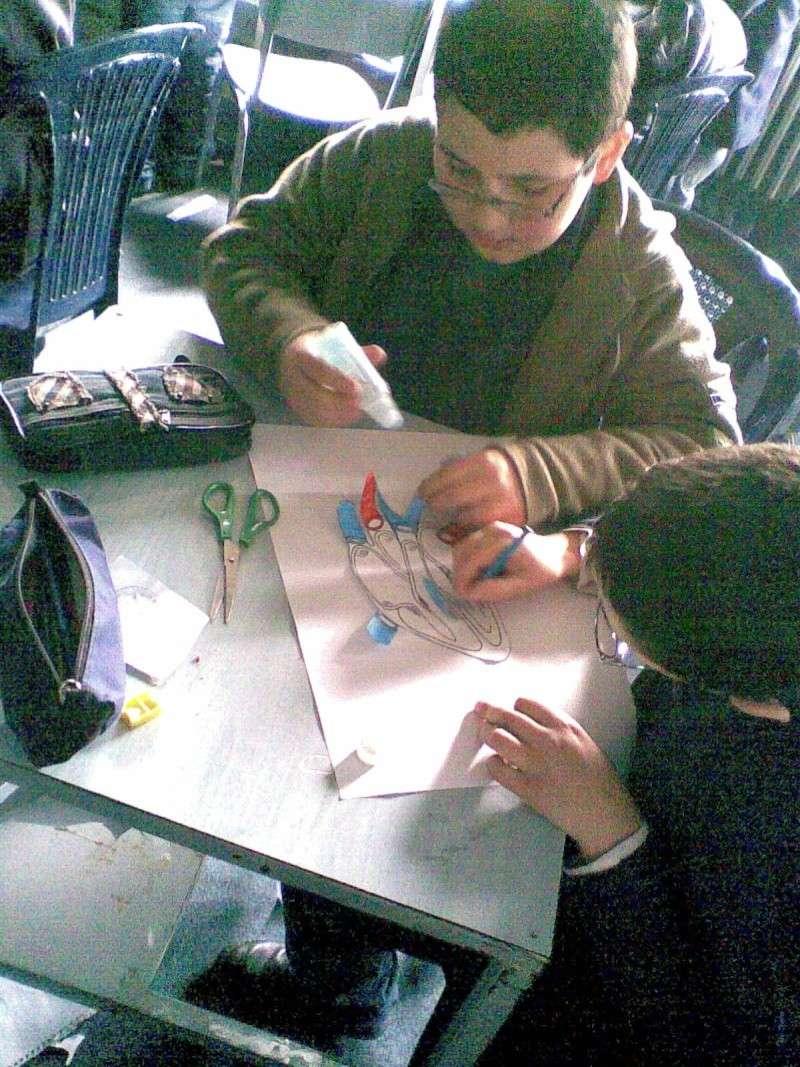 Grade 5 A- The Heart Model Image010