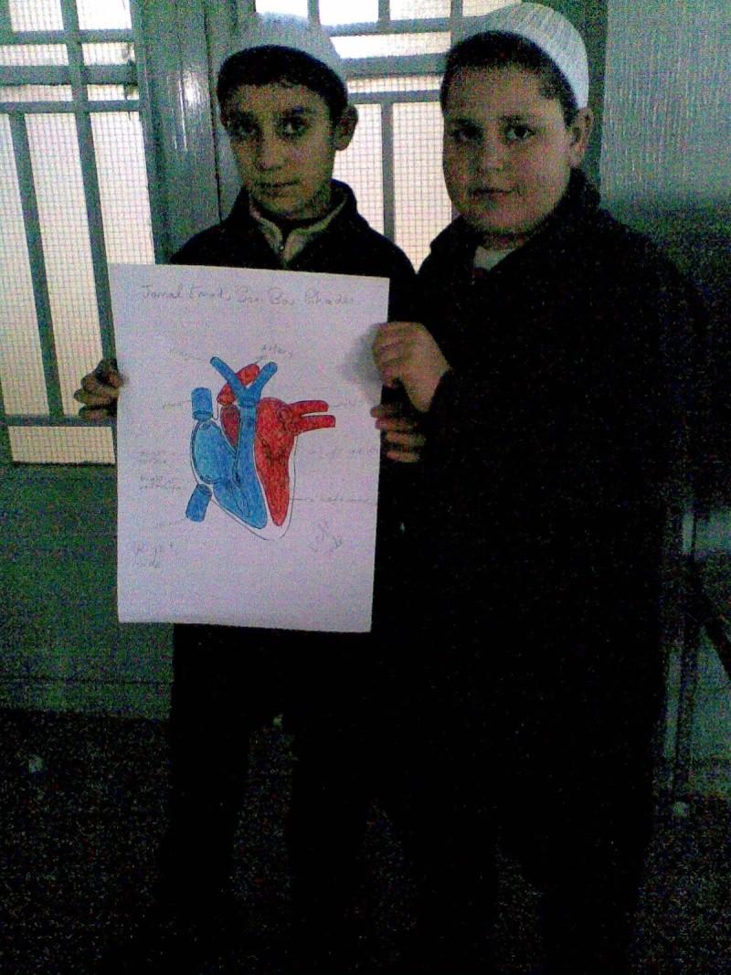 Grade 5 A- The Heart Model Image013