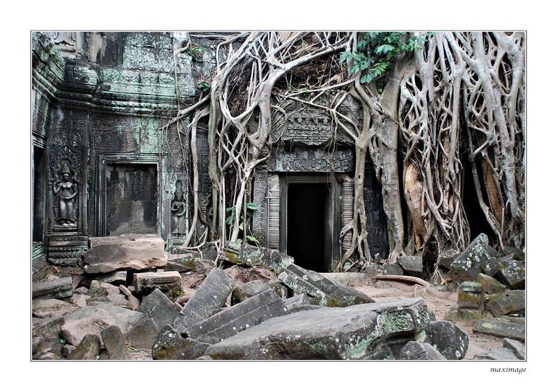 Des représentations de dinosaure trouvées dans les ruines d'un temple au Cambodge ! Ta_pro12
