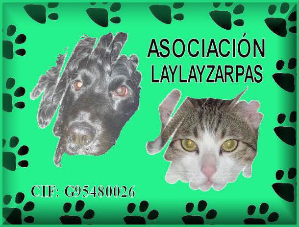 ASOCIACION LAYLAYZARPAS