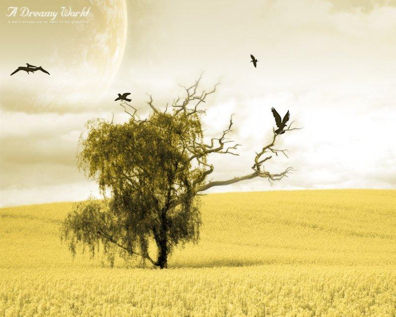 Dreamy world 2010