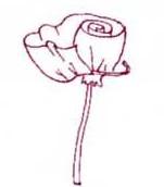 Làm nơ hoa hồng Bevfab11