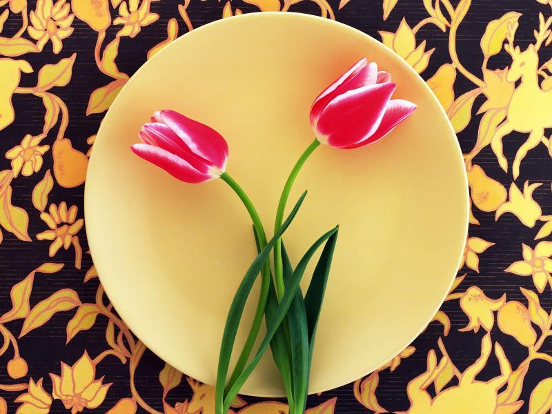 Hoa trên dĩa Hydc_110