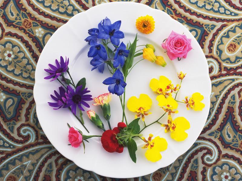 Hoa trên dĩa Hydc_113