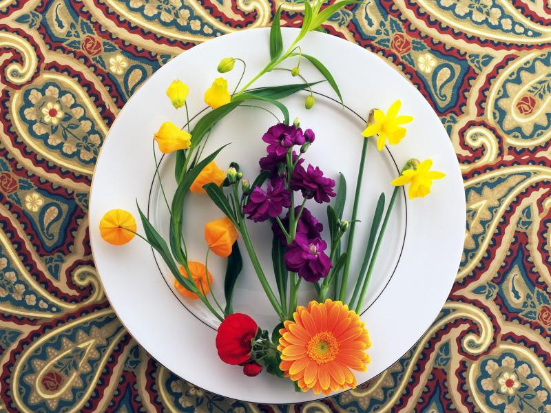 Hoa trên dĩa Hydc_116