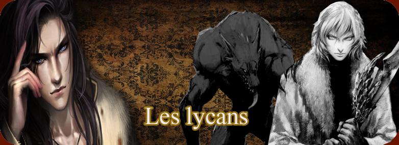 Les caractèristiques  Lyc_co10