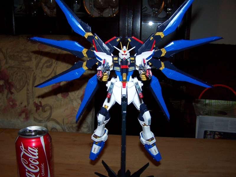 The Gundam Thread 100_0919