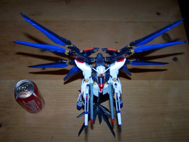 The Gundam Thread 100_0920