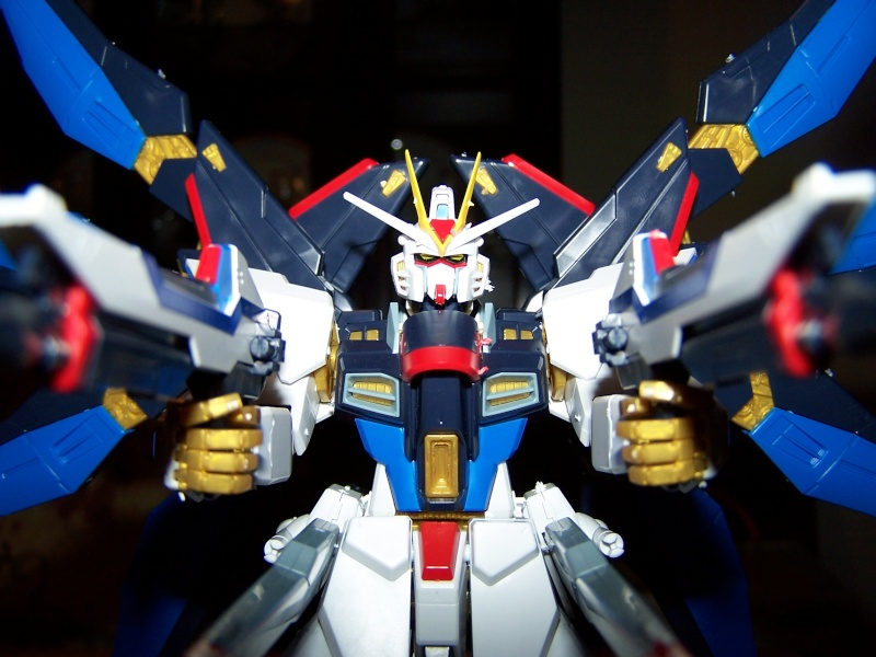 The Gundam Thread 100_0926